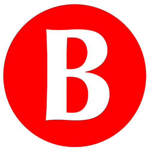 braillo-flat-icon-500