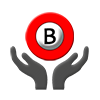 Braillo Support Services